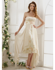 Embroidered Chiffon Dress 0728